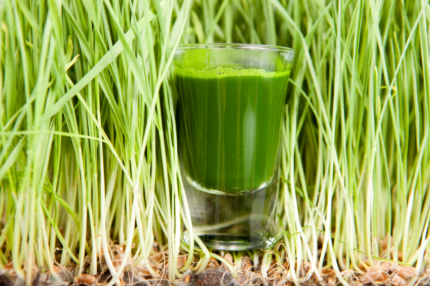 recept za sok od zelenog zita i cena iskustva