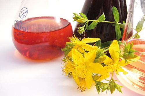 Kantarionovo ulje - upotreba za kozu, kosu i zdravlje + recept