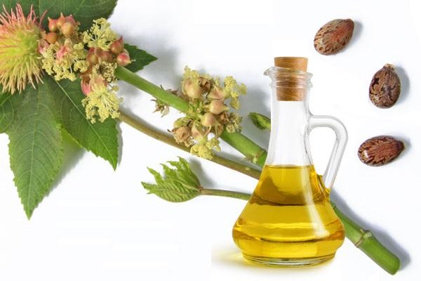 Ricinusovo ulje - upotreba za kosu, kozu, lice, obrve i zdravlje