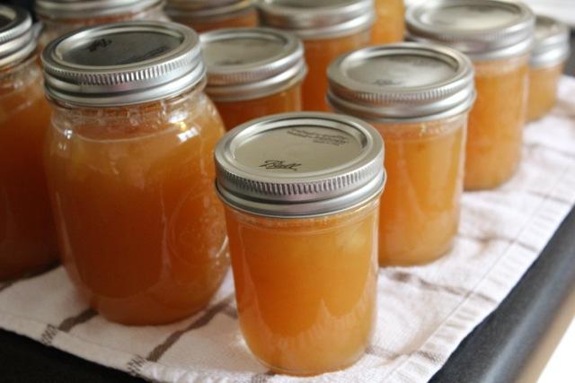 Domaći džem i pekmez od jabuka - recepti