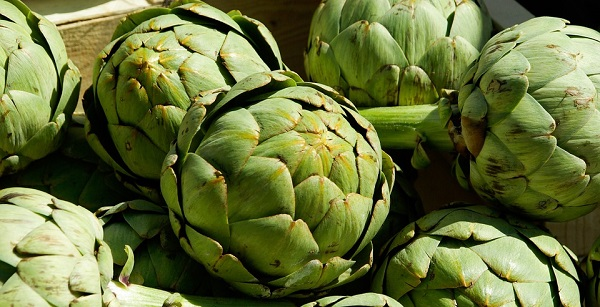 Jestivo samoniklo bilje - 12 najzdravijih biljaka