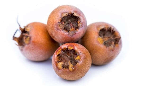 Mušmula – uzgoj, lekovitost, sastav i recepti