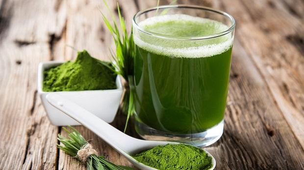 Spirulina alga - lekovita svojstva, tablete i u prahu, načini upotrebe