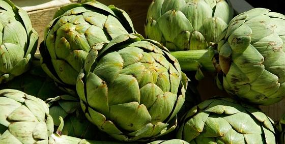 Artičoka povrće - lekovitost, uzgoj, upotreba i recepti